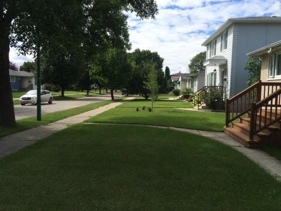 lawns.JPG